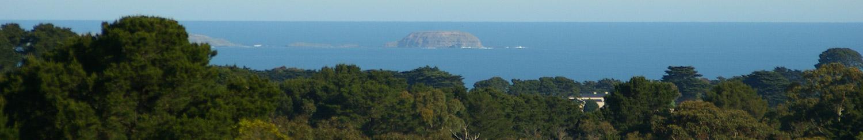 http://www.patonestate.com.au/wp-content/uploads/2014/08/bnr-red-hill.jpg